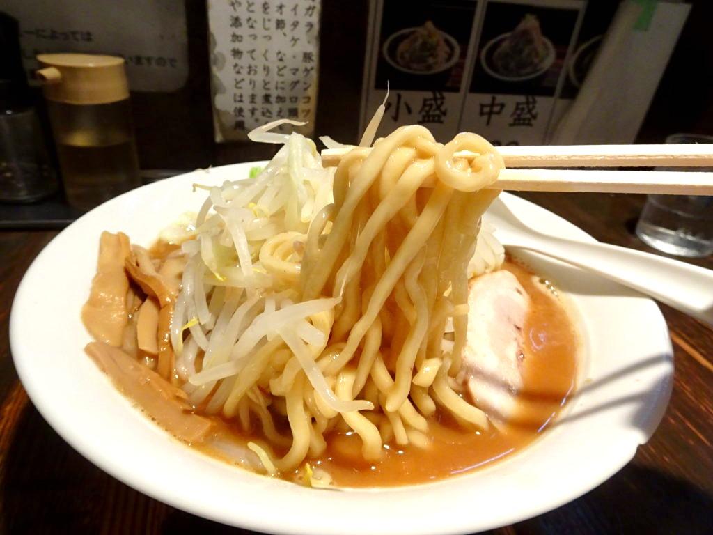 荒海 (あらうみ) ラーメンの麺 太麺